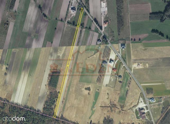 Działka, 5 500 m², Ławki