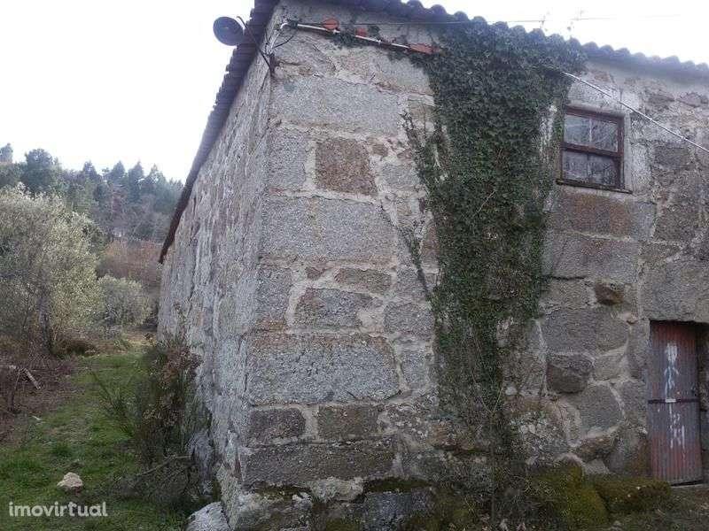 Quintas e herdades para comprar, Bornes de Aguiar, Vila Real - Foto 12