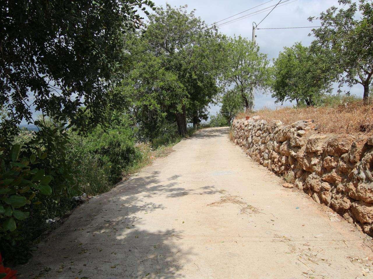 Quintas e herdades para comprar, Boliqueime, Faro - Foto 29