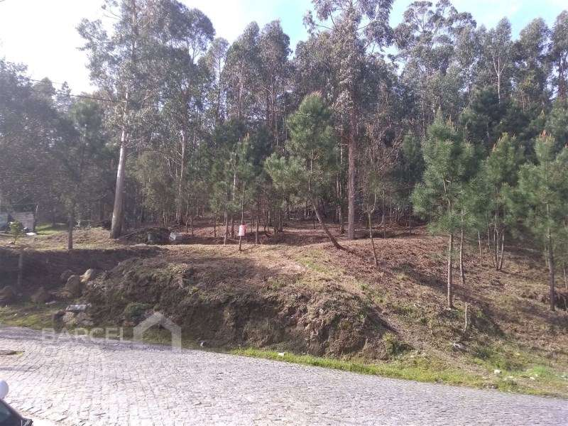 Terreno para comprar, Carvalhal, Braga - Foto 10