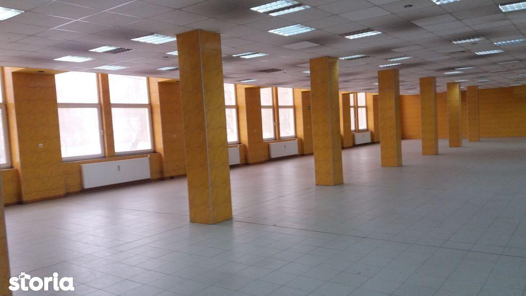 Imobiliare Maxim - hale zona centrala