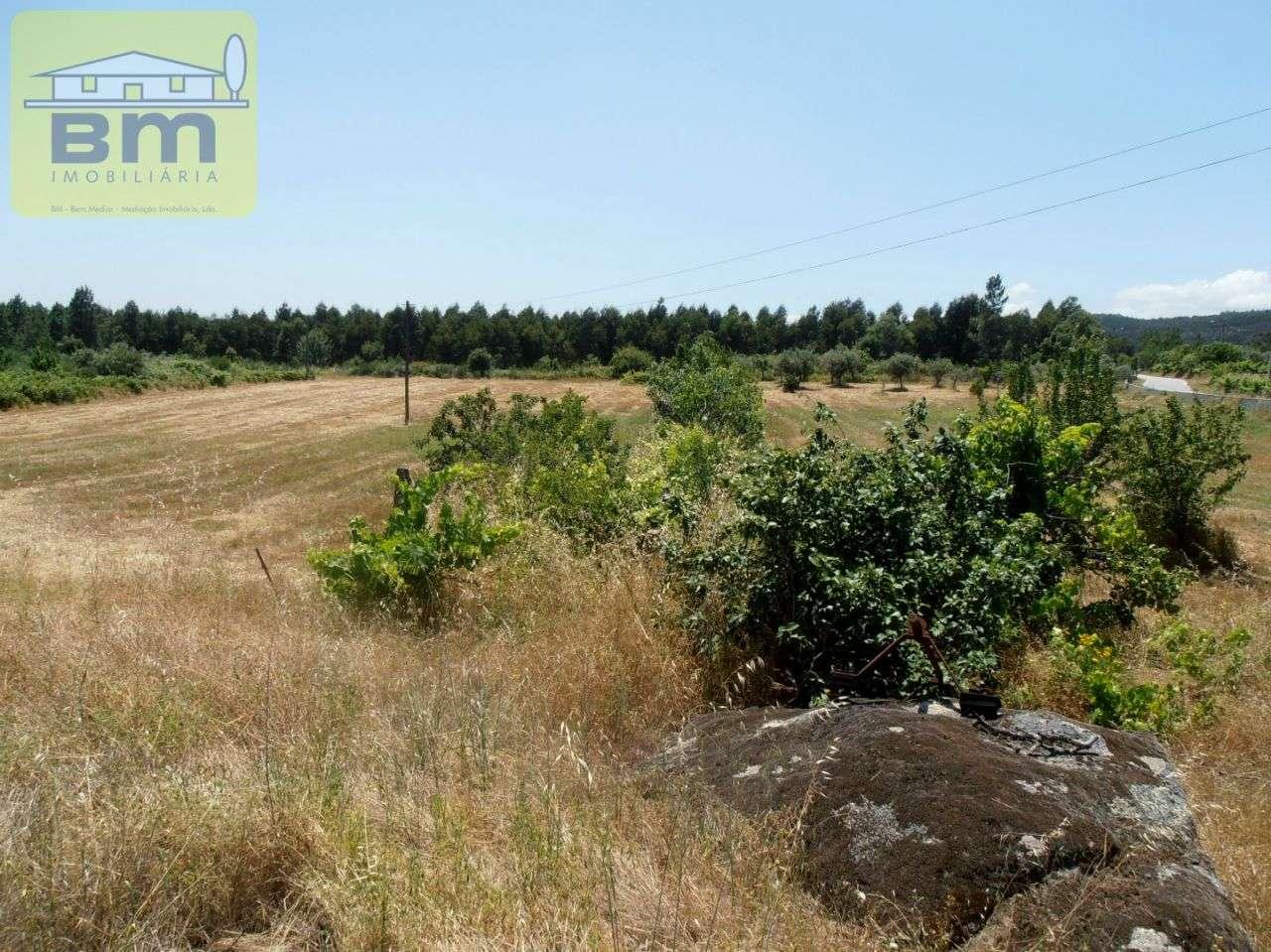 Quintas e herdades para comprar, Alcains, Castelo Branco - Foto 5