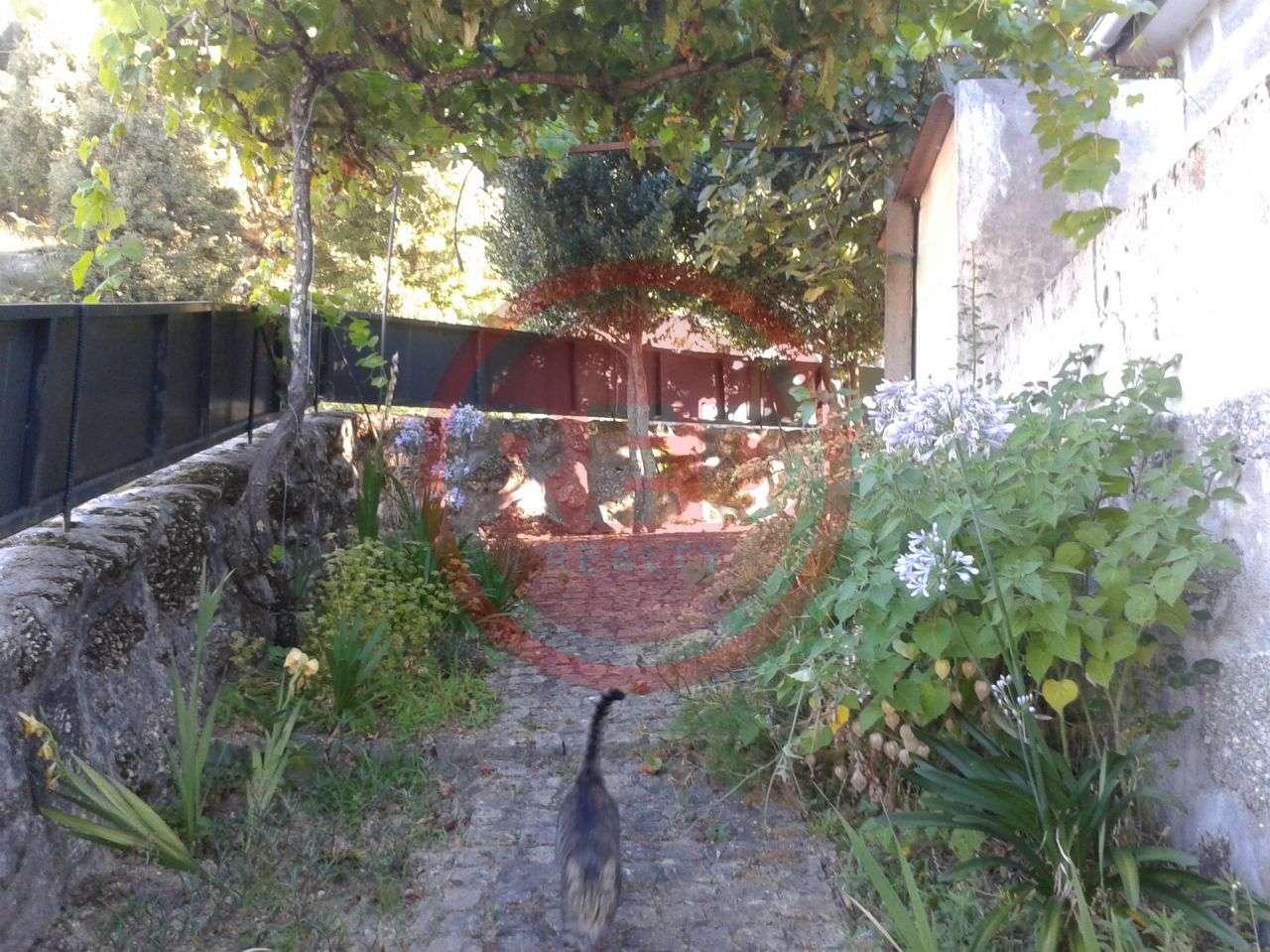 Quintas e herdades para comprar, Rendufinho, Póvoa de Lanhoso, Braga - Foto 8