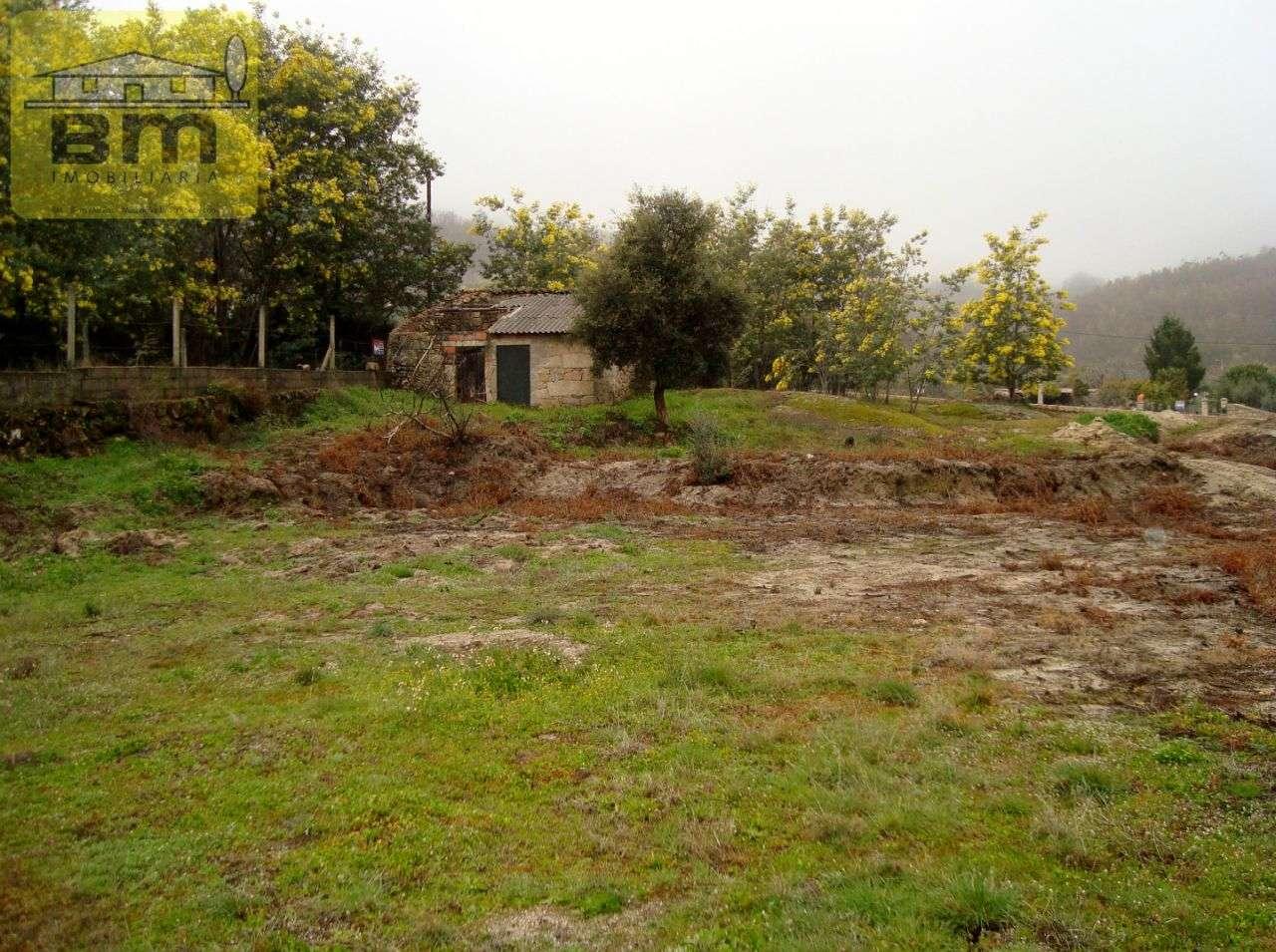 Quintas e herdades para comprar, Almaceda, Castelo Branco - Foto 12