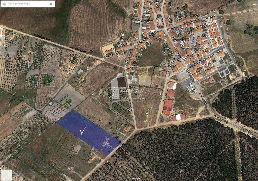 Quintas e herdades para comprar, Santiago do Cacém, Santa Cruz e São Bartolomeu da Serra, Setúbal - Foto 12