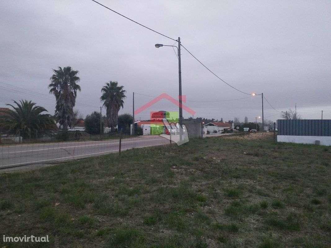 Terreno para comprar, Torres Novas (Santa Maria, Salvador e Santiago), Torres Novas, Santarém - Foto 2