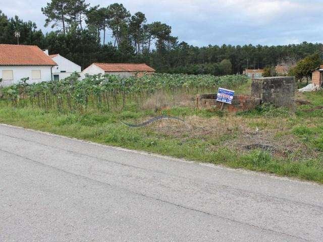 Terreno para comprar, Louriçal, Pombal, Leiria - Foto 3