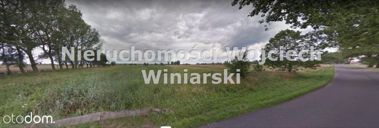Działka, 3 006 m², Lubczyna