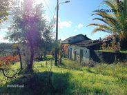 Terreno para comprar, Sertã, Castelo Branco - Foto 29