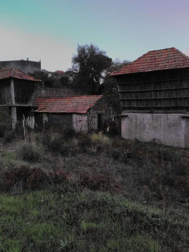 Quintas e herdades para comprar, Oliveira do Douro, Vila Nova de Gaia, Porto - Foto 24