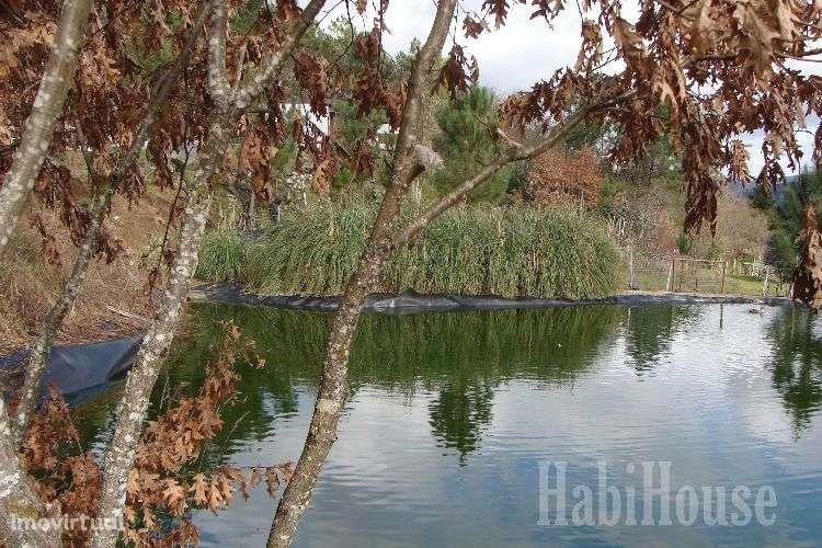Quintas e herdades para comprar, Povolide, Viseu - Foto 7