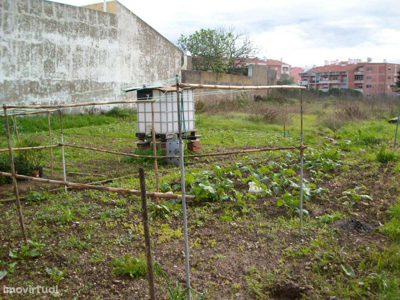 Terreno para comprar, Sintra (Santa Maria e São Miguel, São Martinho e São Pedro de Penaferrim), Sintra, Lisboa - Foto 2