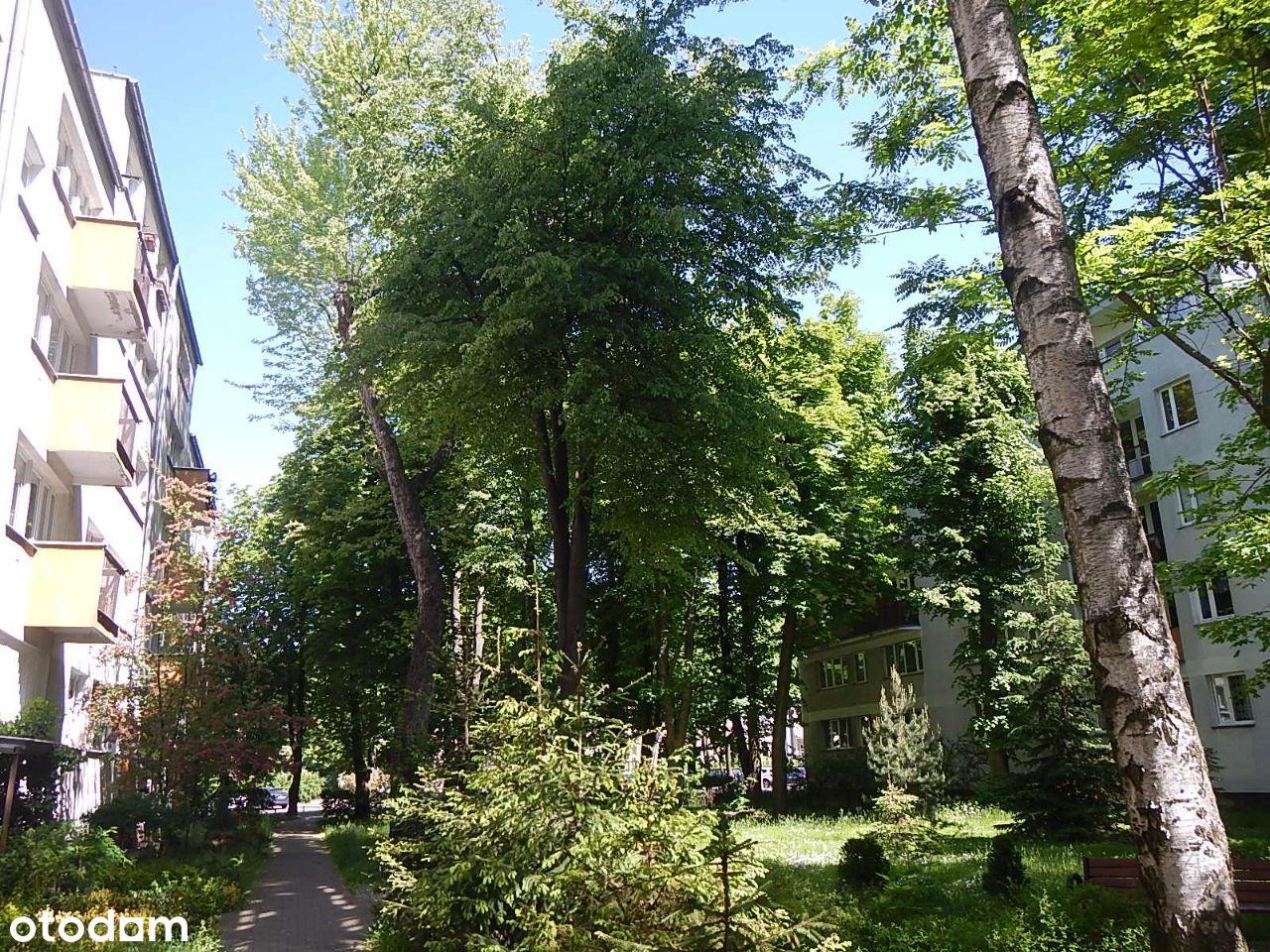 Wynajmę mieszkanie trzy pokoje Warszawa Mokotów
