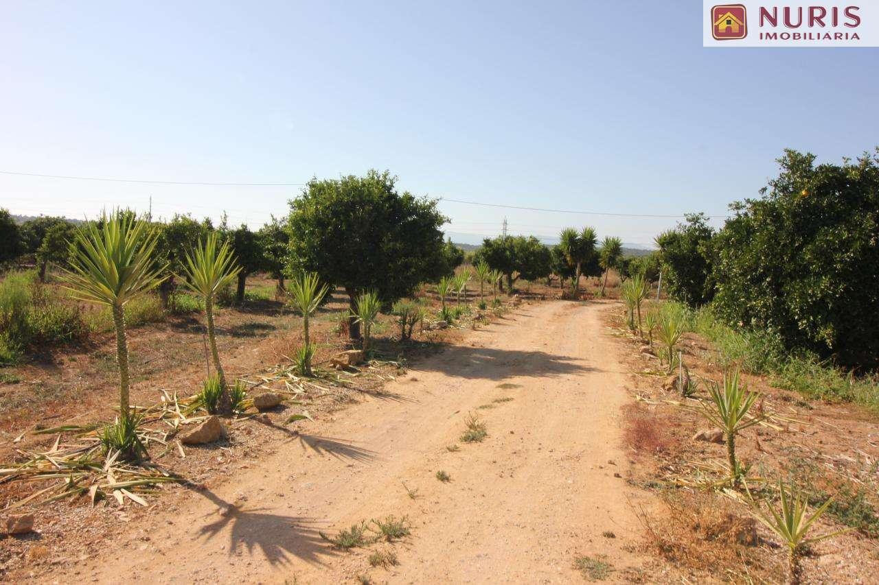Quintas e herdades para comprar, Porches, Faro - Foto 14