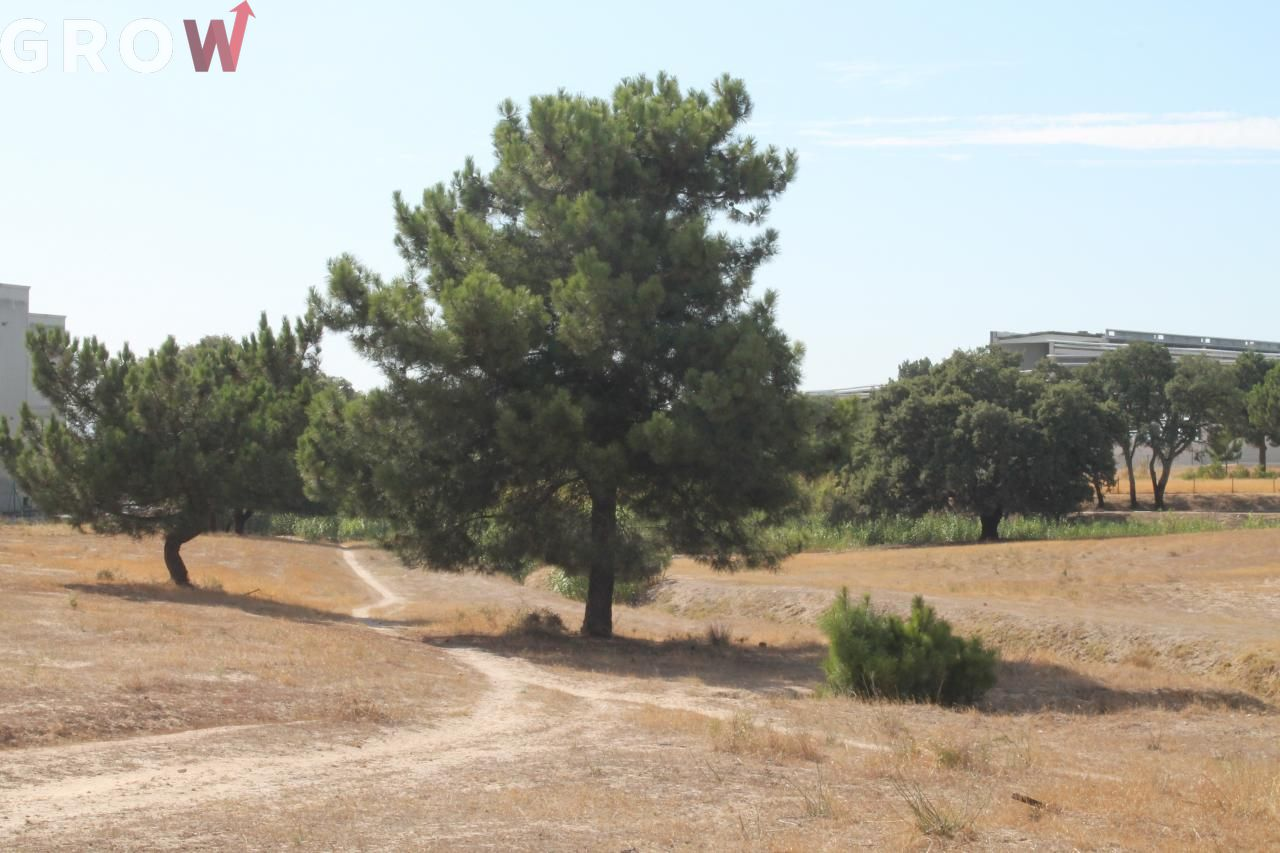 Terreno para comprar, Atalaia e Alto Estanqueiro-Jardia, Montijo, Setúbal - Foto 1