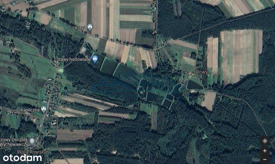 Działka, 6 400 m², Wola Rowska
