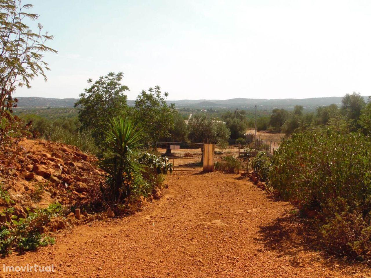 Terreno para comprar, Alte, Loulé, Faro - Foto 3