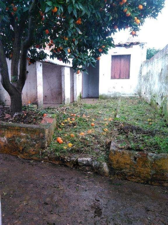 Moradia para comprar, Viana do Alentejo - Foto 15