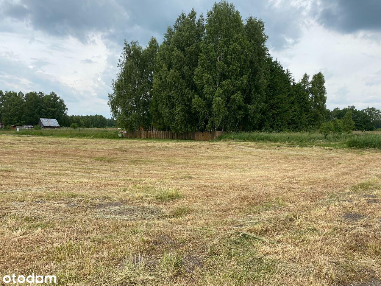 Działka rolno-rekreacyjna Strzyże (Łęcino)