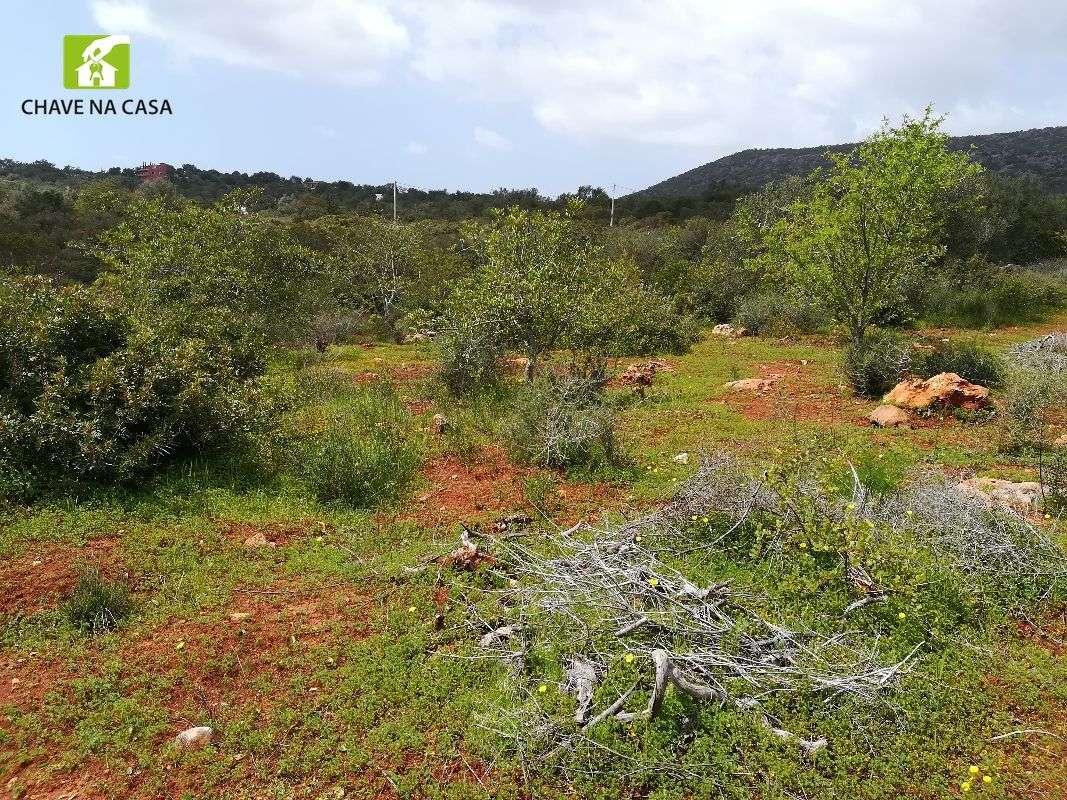 Terreno para comprar, Moncarapacho e Fuseta, Faro - Foto 21