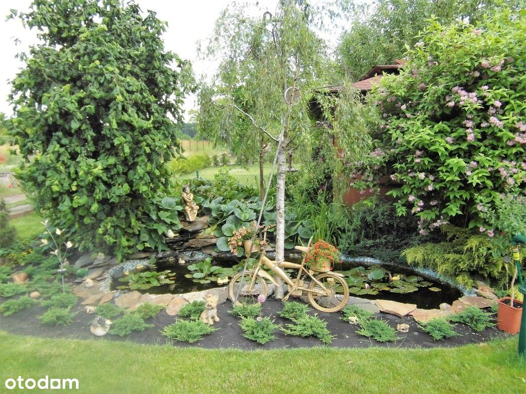 Rod Drzewce z pięknym ogrodem!!!
