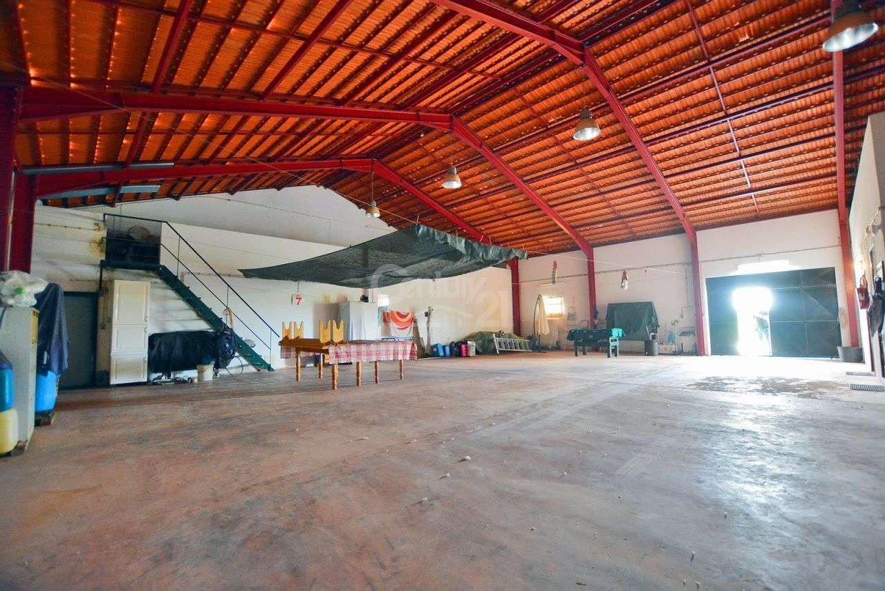 Quintas e herdades para comprar, Branca, Coruche, Santarém - Foto 43
