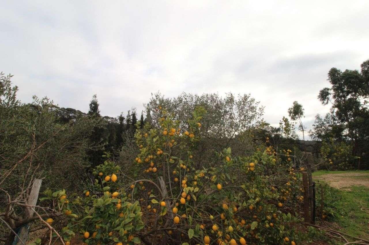 Quintas e herdades para comprar, Aljezur, Faro - Foto 13