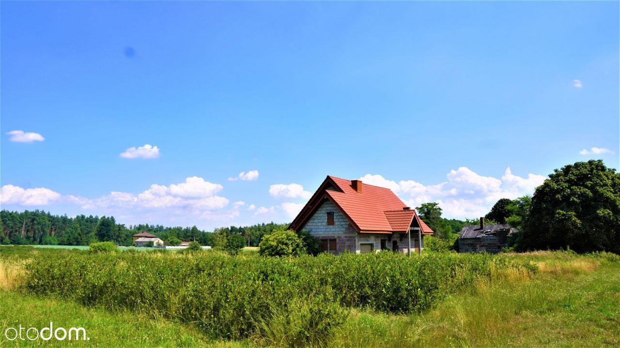 Dom na sprzedaż z plantacją aronii
