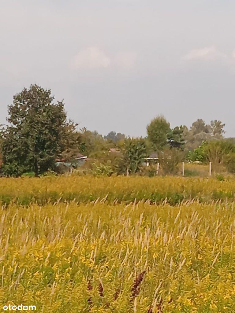 działka rolna 2,3 ha w atrakcyjnym miejscu