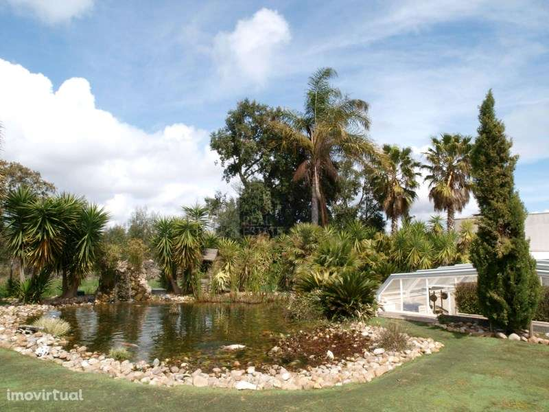 Quintas e herdades para comprar, Quinta do Anjo, Setúbal - Foto 12