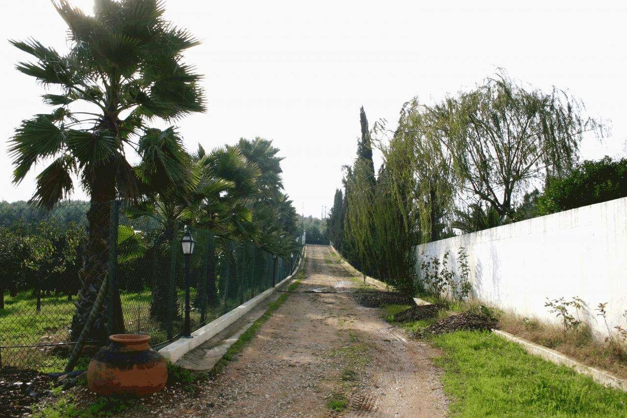 Quintas e herdades para comprar, Praia do Ribatejo, Santarém - Foto 3
