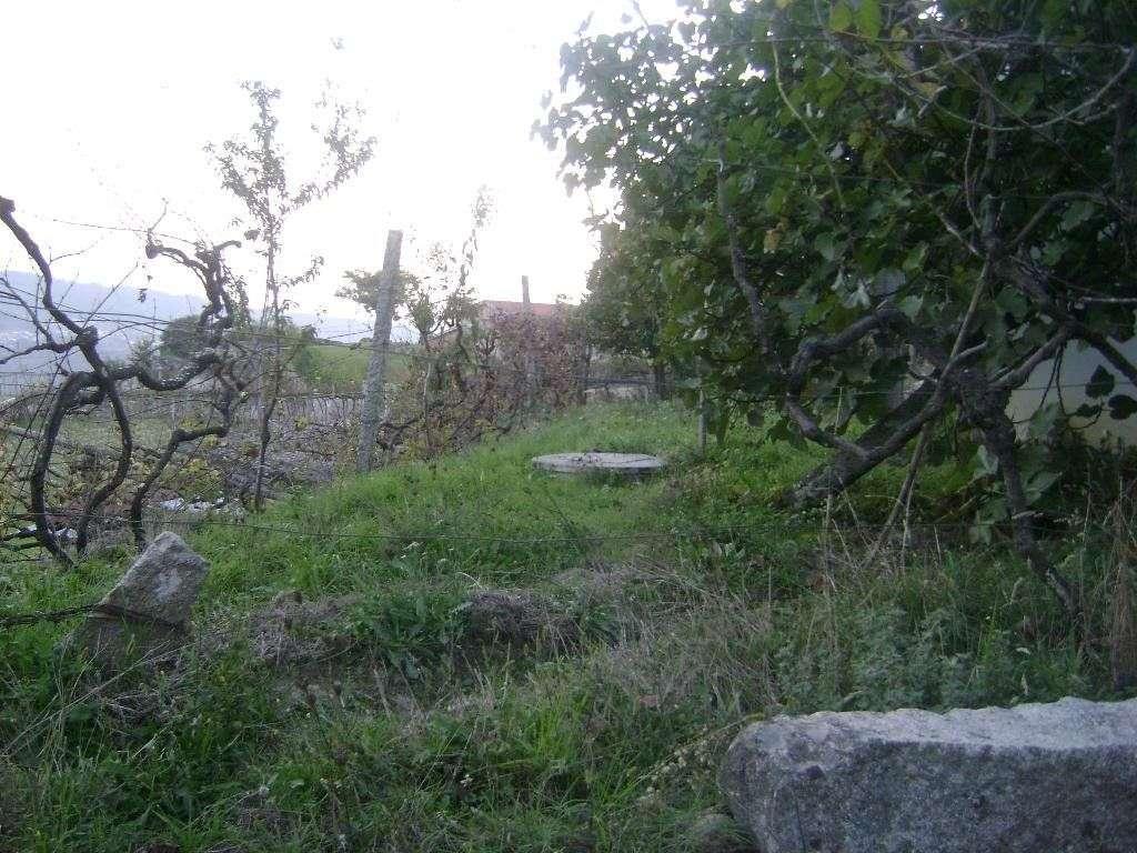 Quintas e herdades para comprar, Bem Viver, Marco de Canaveses, Porto - Foto 6