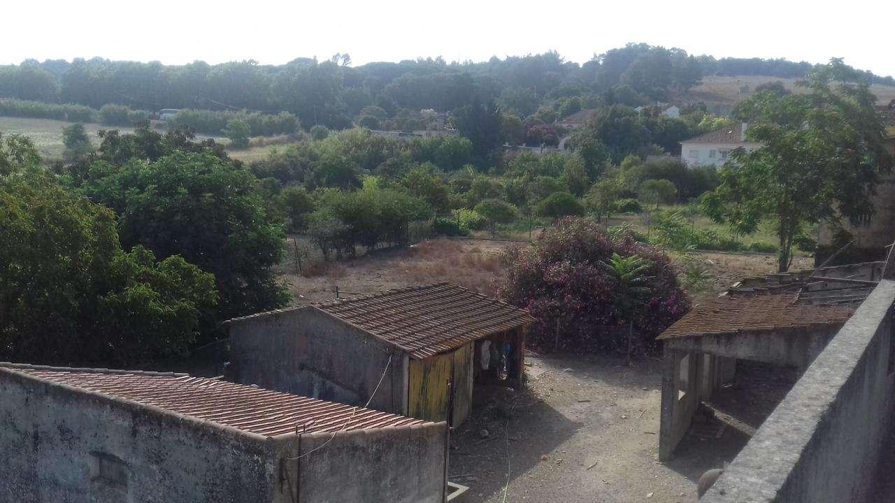 Quintas e herdades para comprar, Azeitão (São Lourenço e São Simão), Setúbal - Foto 5