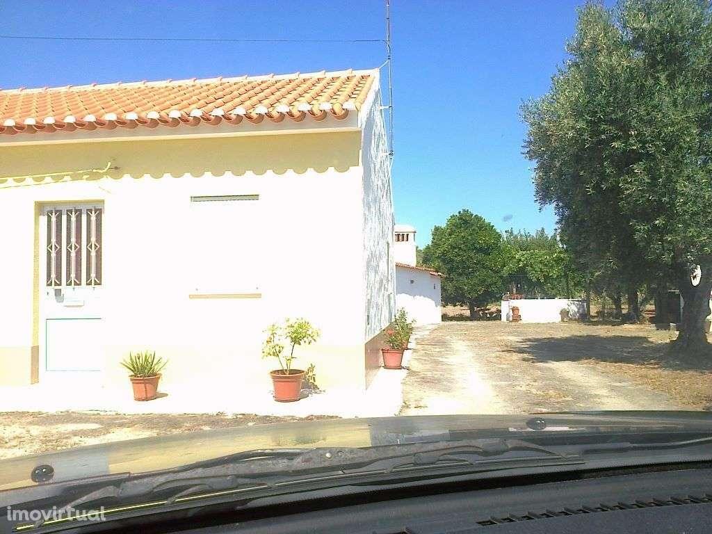 Quintas e herdades para comprar, Ponte de Sor, Tramaga e Vale de Açor, Portalegre - Foto 3