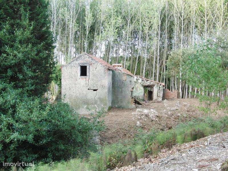 Terreno para comprar, Coz, Alpedriz e Montes, Leiria - Foto 5