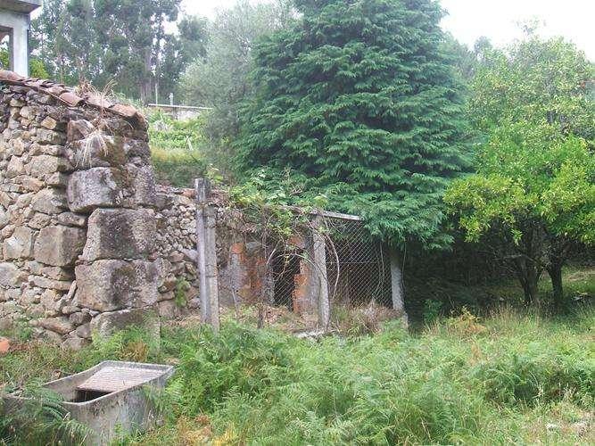 Quintas e herdades para comprar, Facha, Ponte de Lima, Viana do Castelo - Foto 12