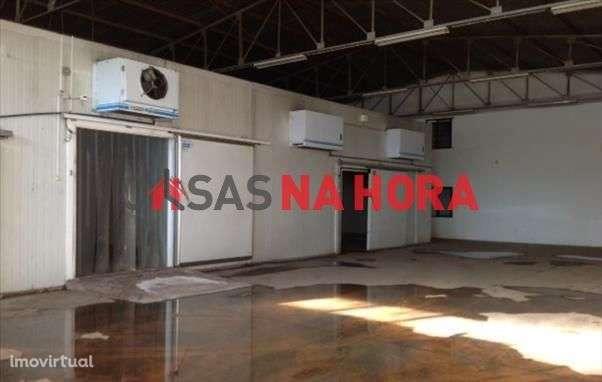 Armazém para comprar, Antas e Abade de Vermoim, Vila Nova de Famalicão, Braga - Foto 4