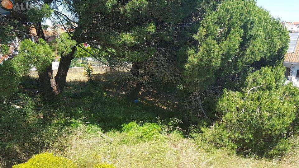 Terreno para comprar, Charneca de Caparica e Sobreda, Almada, Setúbal - Foto 8