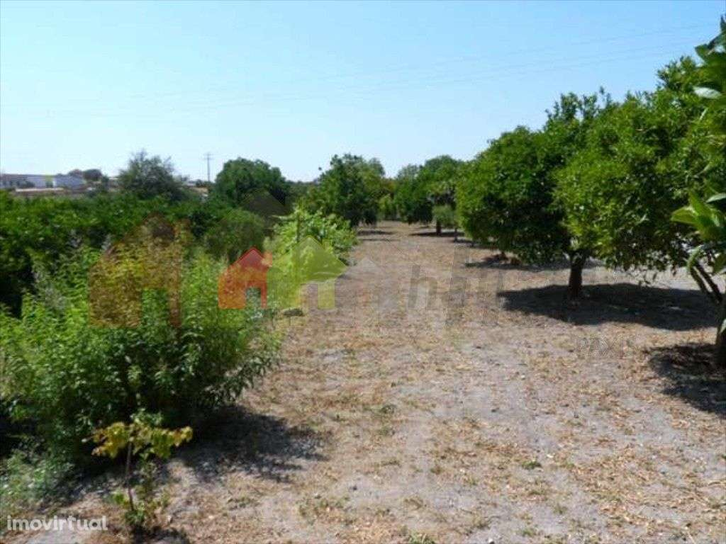 Quintas e herdades para comprar, Beringel, Beja - Foto 7