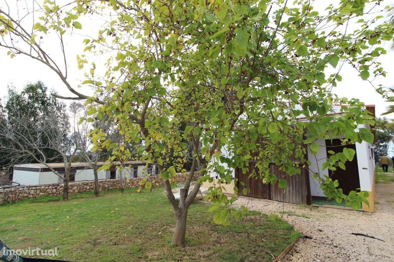 Quintas e herdades para comprar, Aljezur, Faro - Foto 19