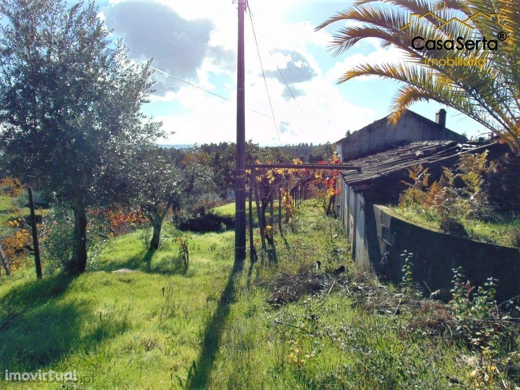 Terreno para comprar, Sertã, Castelo Branco - Foto 30