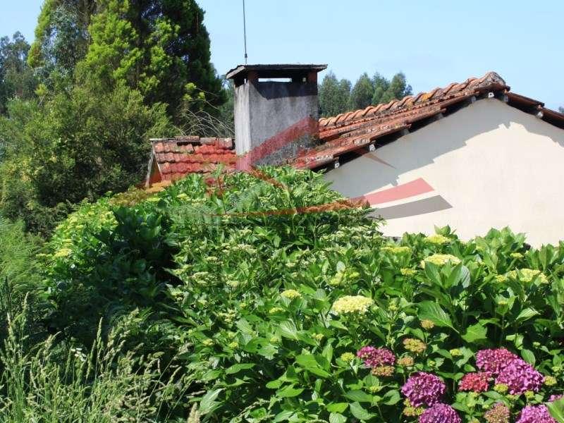 Quintas e herdades para comprar, Cedrim e Paradela, Sever do Vouga, Aveiro - Foto 5