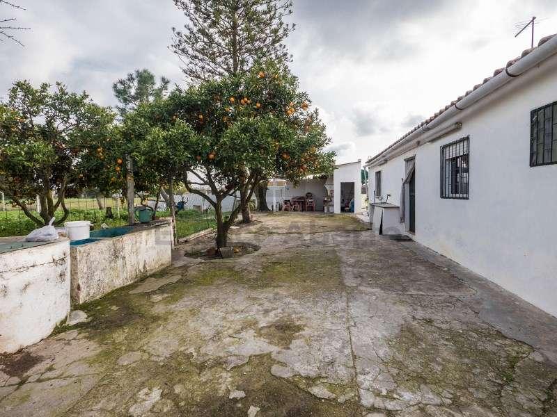 Quintas e herdades para comprar, Pinhal Novo, Palmela, Setúbal - Foto 4