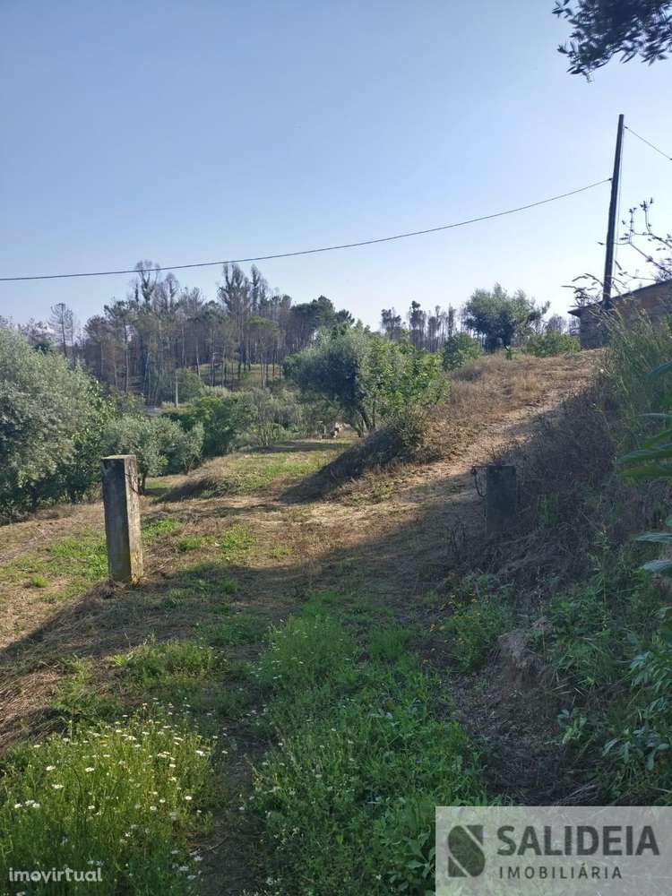 Terreno para comprar, Currelos, Papízios e Sobral, Viseu - Foto 13