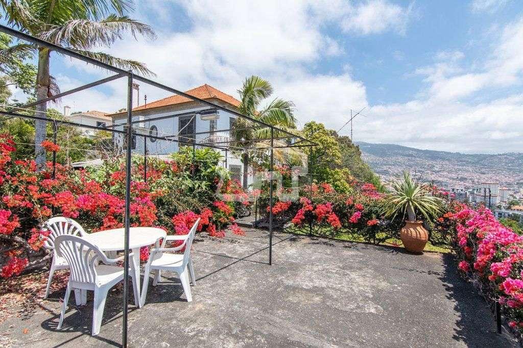 Quintas e herdades para comprar, São Martinho, Ilha da Madeira - Foto 13