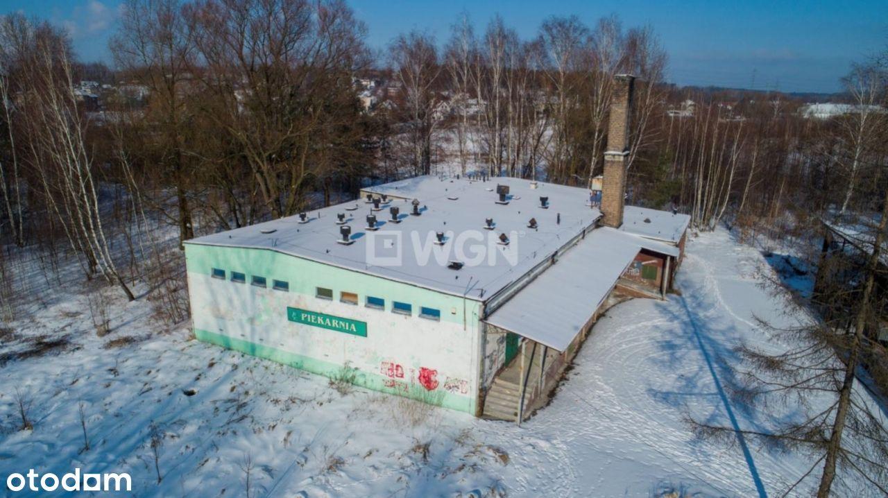 Lokal użytkowy, 870 m², Jaworzno