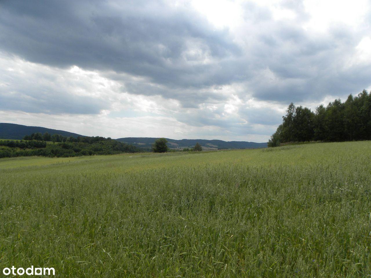 Błażkowa, działka rolna 3,79 ha