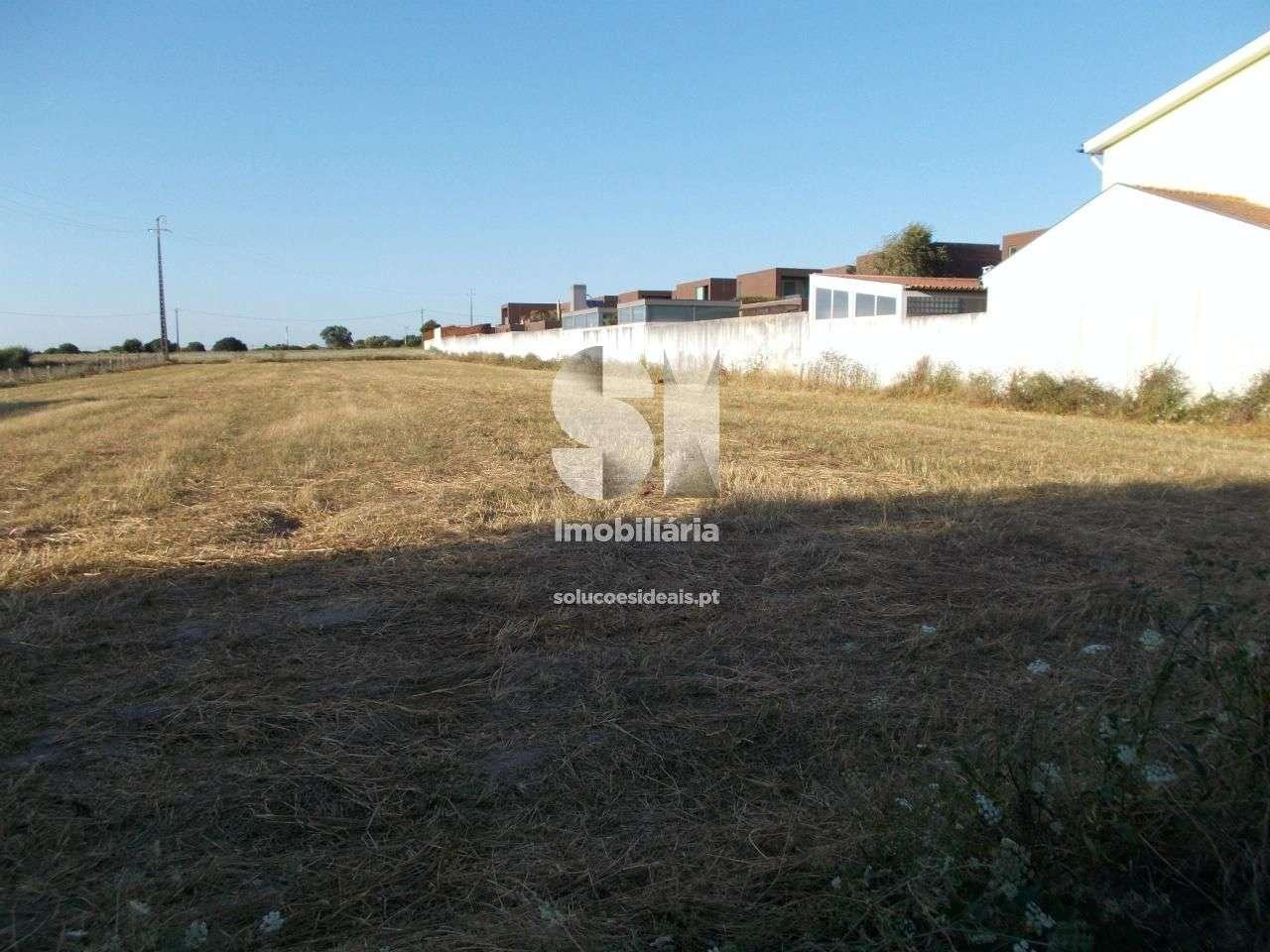 Terreno para comprar, São Bernardo, Aveiro - Foto 3