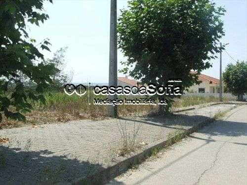 Terreno para comprar, Brogueira, Parceiros de Igreja e Alcorochel, Santarém - Foto 3