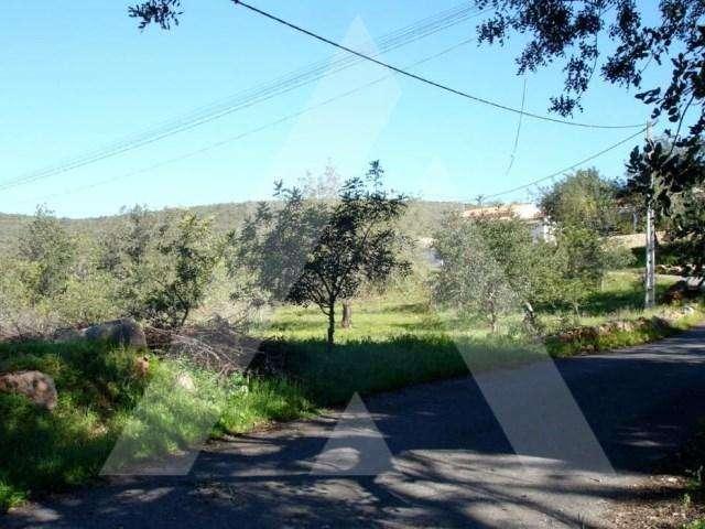 Terreno para comprar, Querença, Tôr e Benafim, Faro - Foto 2
